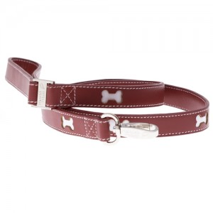 bones red leash jpg