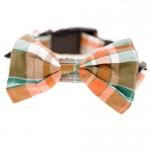 bowtie-dog-collar-tartan jpg