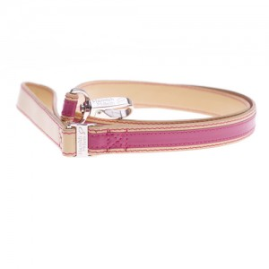 buttertfly pink  leash jpg
